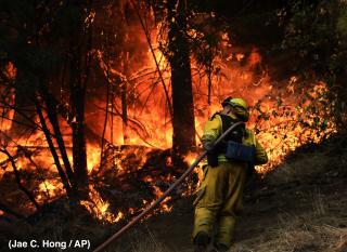 Wildfire w Credit